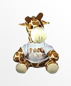 giraffa dolly